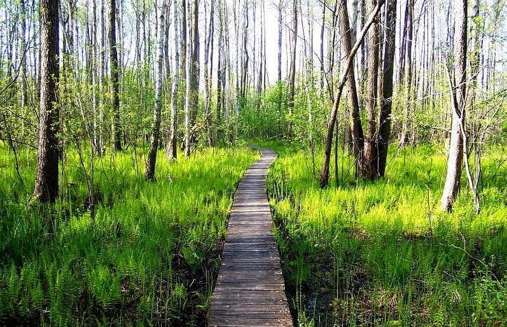 Chełm - Poleski Park Narodowy