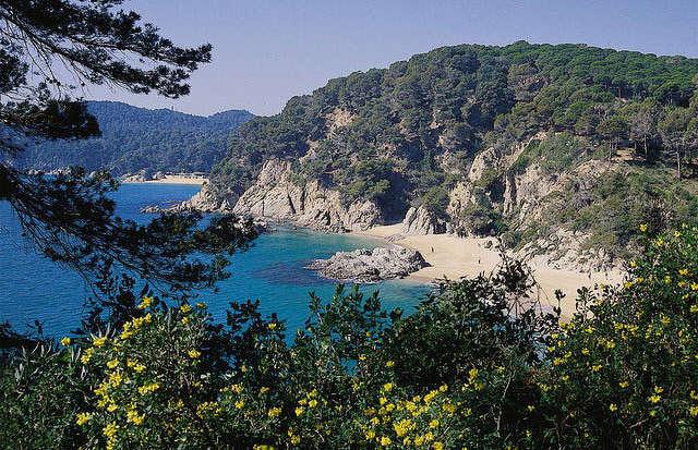 Francja Hiszpania