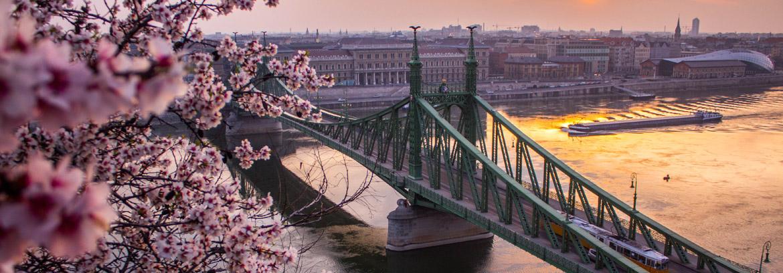 Węgry na CityLove